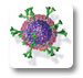 Immunology Innovation