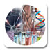 Journal of Metabolomics